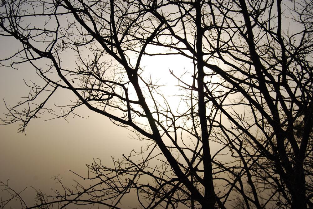 SUNSET by krishnakumar