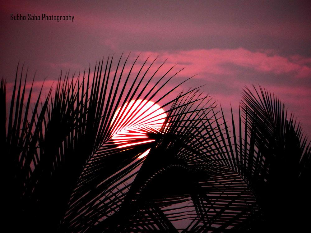 Sunrise by Subho Saha