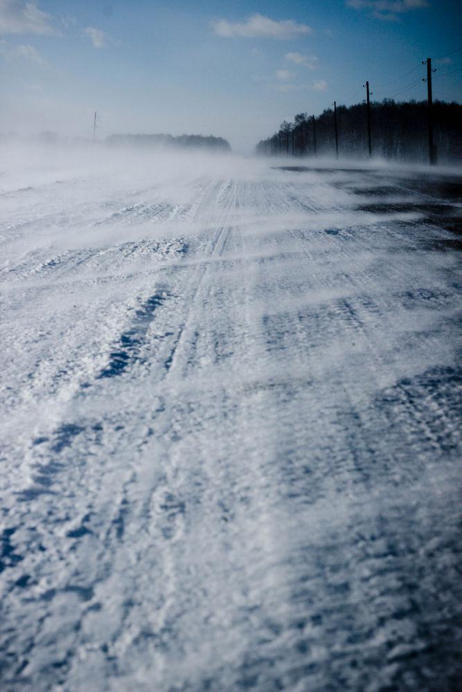 Siberia by Roslyn