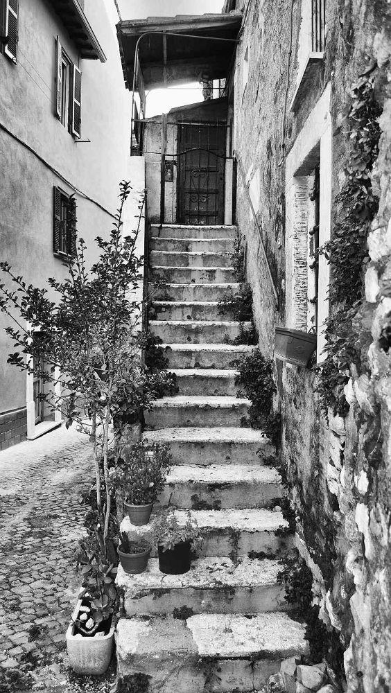 294 by Maurizioiaco