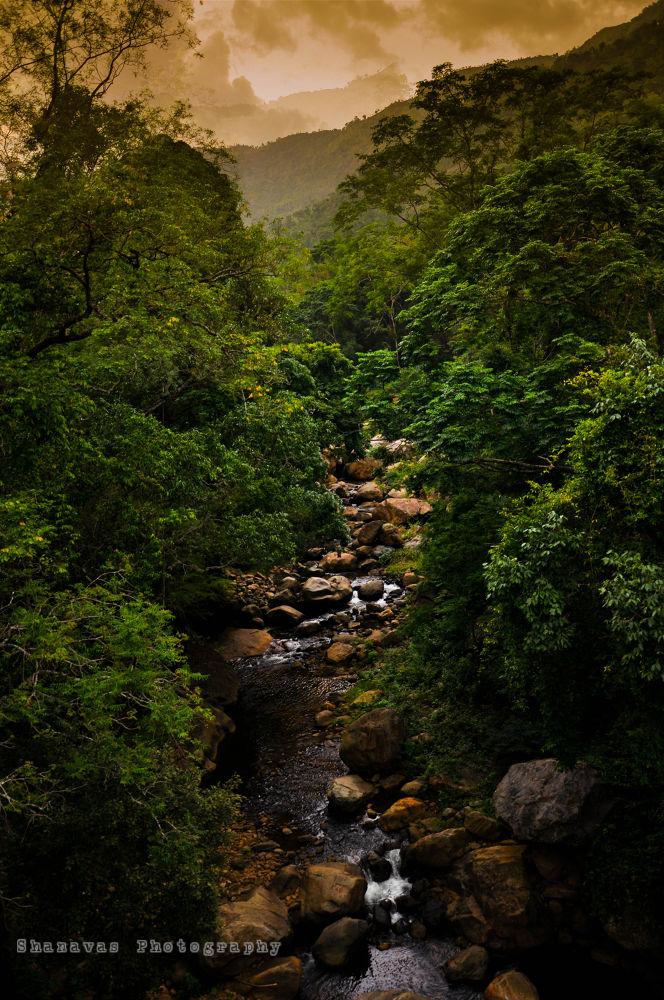 Waterfall by SHANAVAS KT