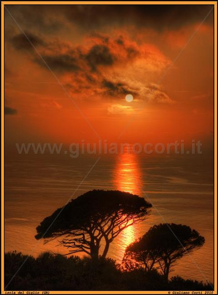Isola-del-giglio-dsc0528-h-300--275- by Giuliano_Corti
