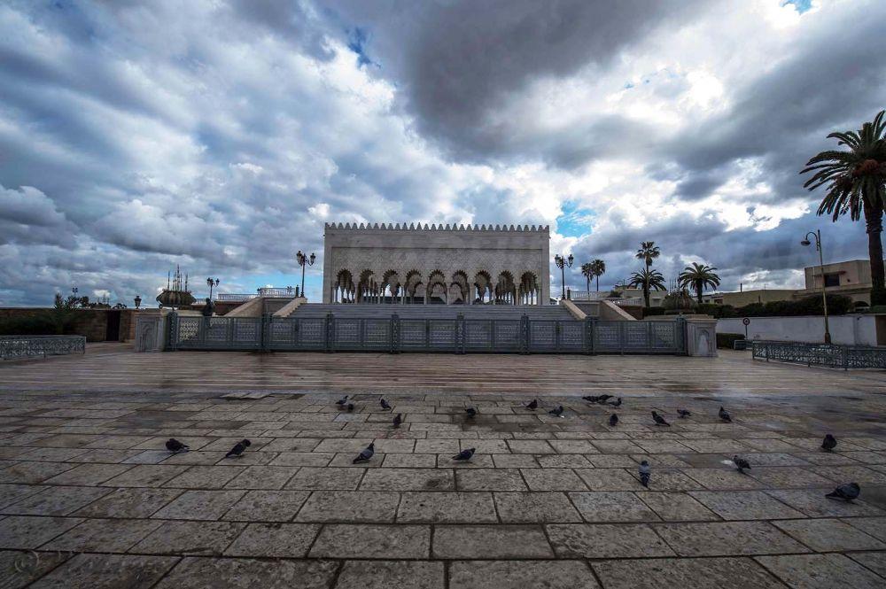 _DSC2436 by MohamedBachirBennani