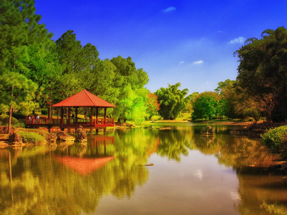 Botanical Garden (7) new by Jorge Coromina