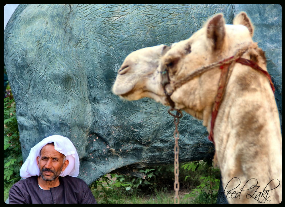 Egyptian by Leedoz