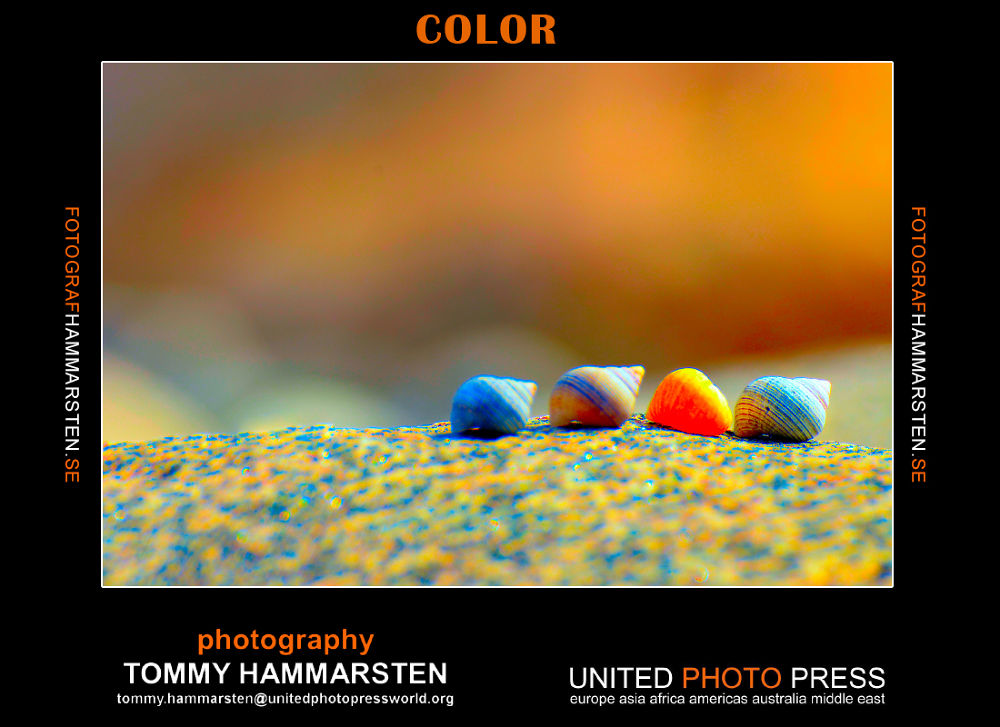 color by tommytechno