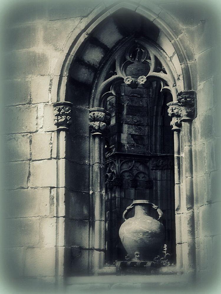 Photo in Random #patio de la catedral de barcel