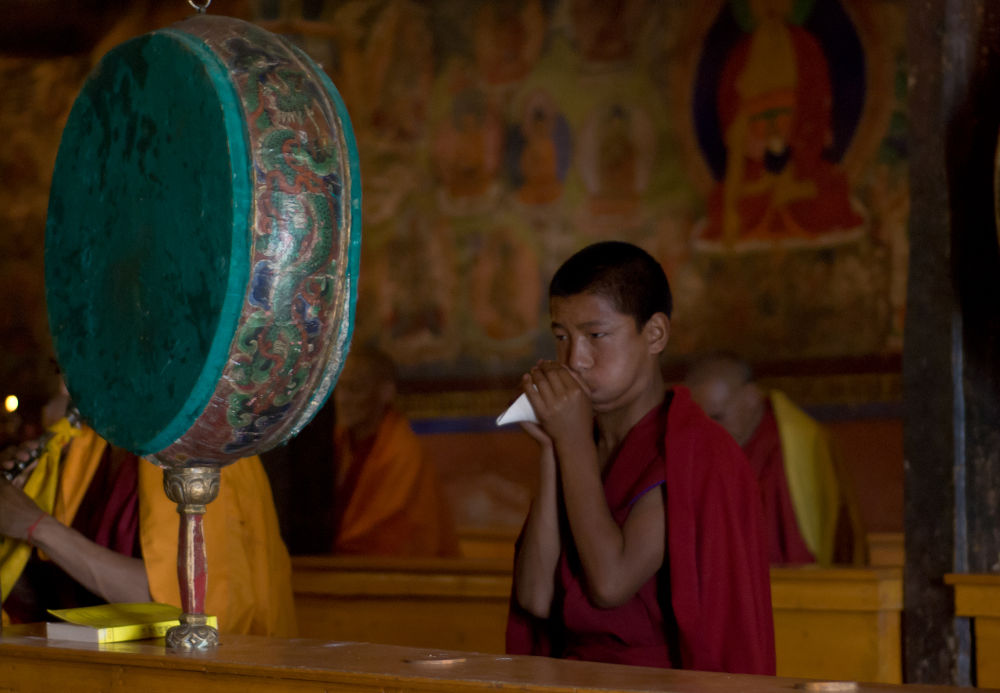 Young buddhist monk during ceremony, India by paveldobrovsky
