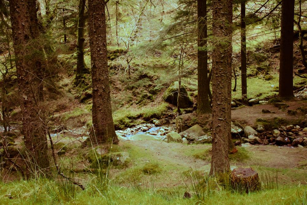 Glendalough by Agnesa