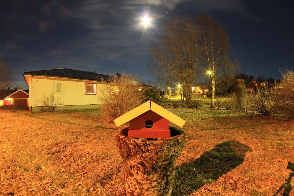 029....first the birdhouse then the Cuckoo's Nest by vidar mathisen