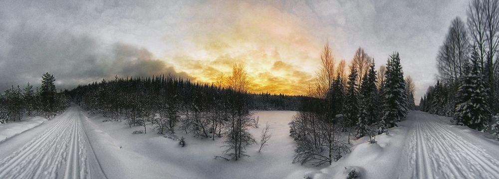 Winter Wonderland by fredriksvanholm