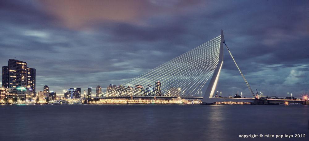Rotterdam's Erasmus Bridge by mechar88