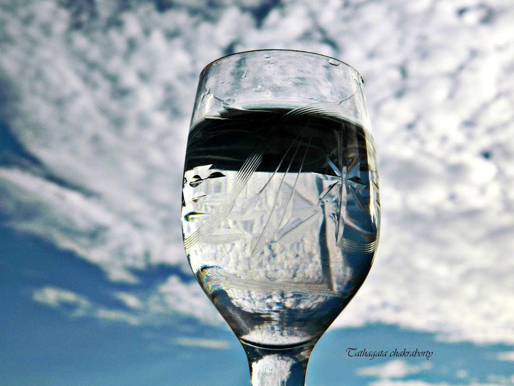 A toast to life by tatha89