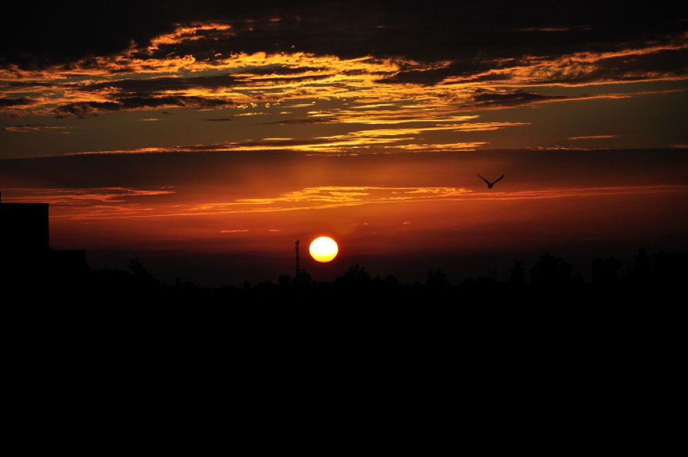 Sunset Silhouette photography by manjot13