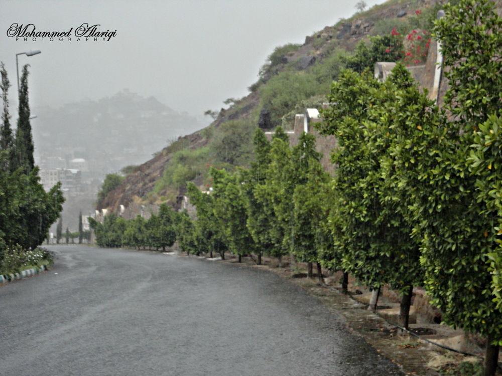 RAIN in my lovly city by MohammedAlAriqi