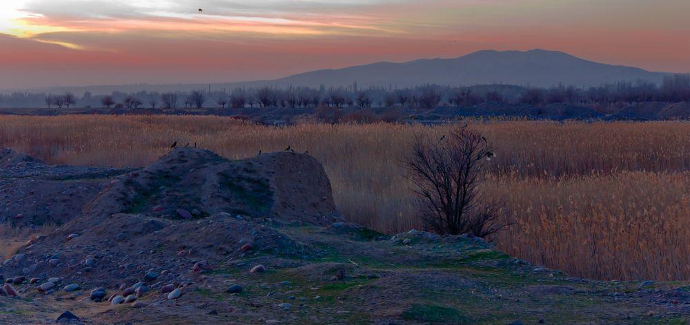 Valley by alekseytudakov