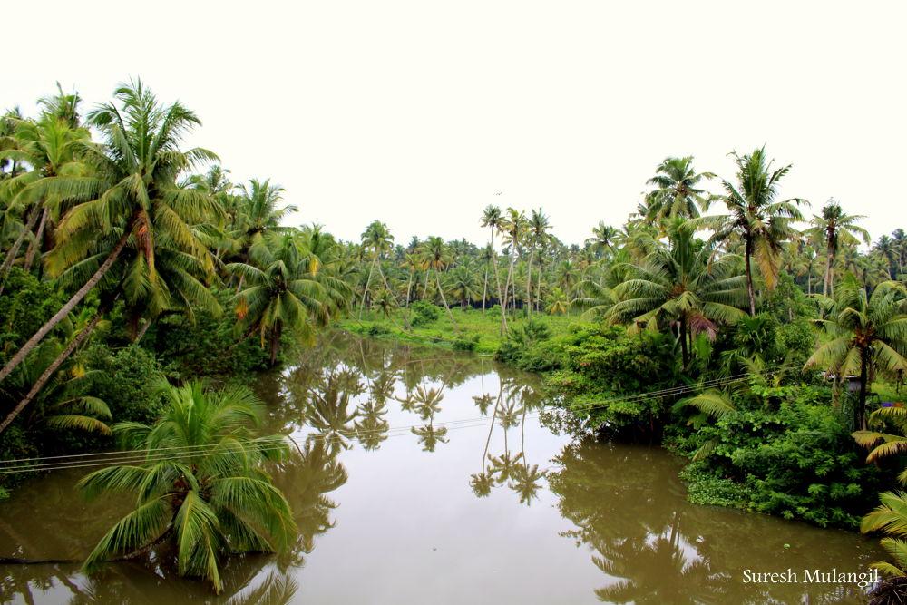 Kakkathuruthi River edited copy.jpg 1 by sura