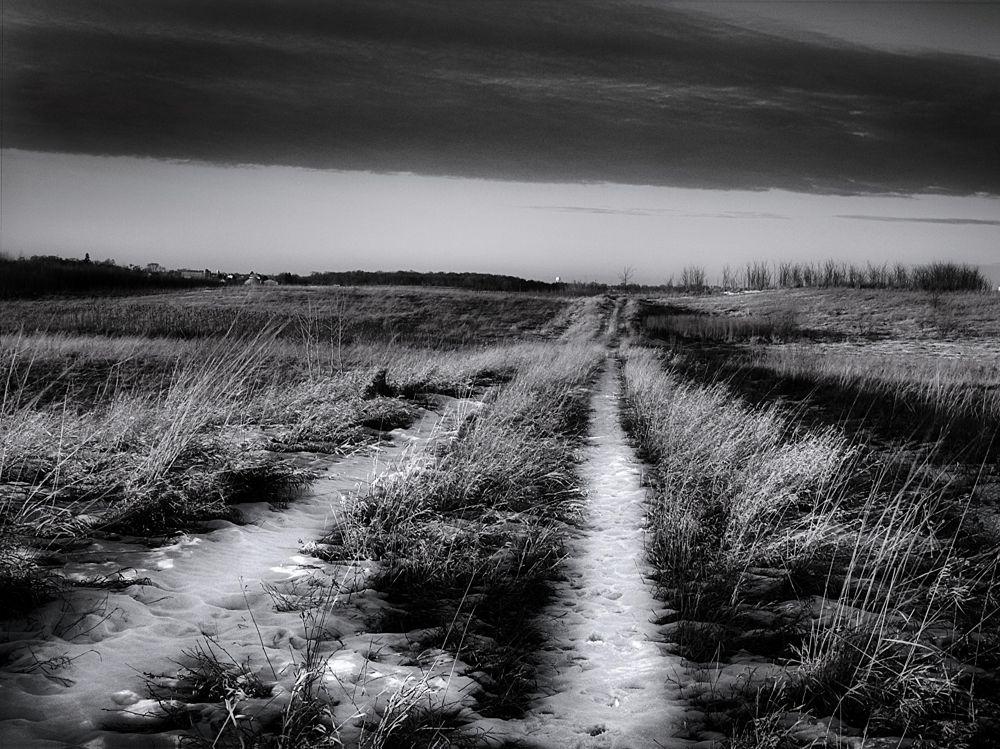 Dark Path by chaaland