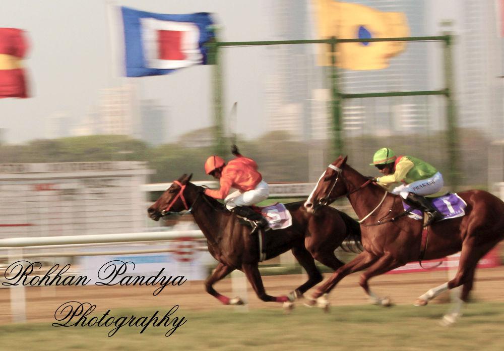IMG_3901 by rohhanpandya