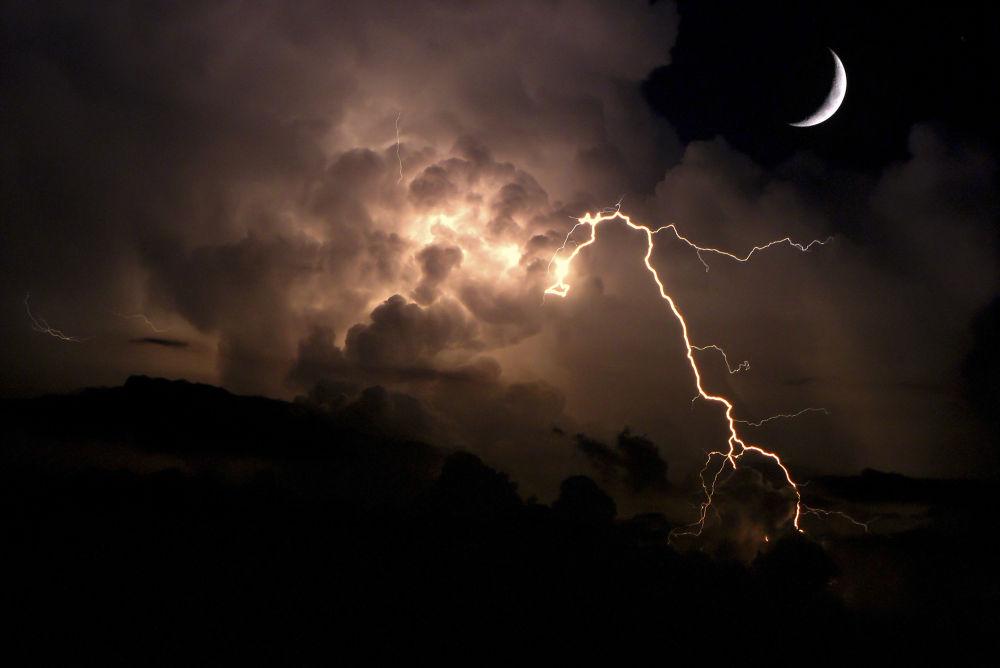 Nature at Night 2 by Jorge Coromina