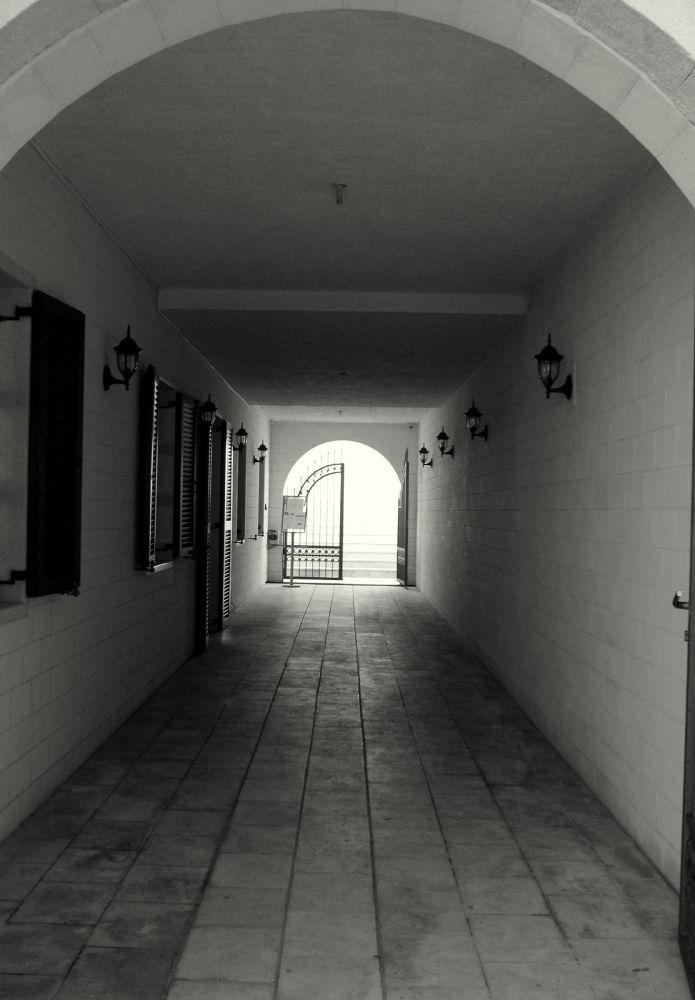 IMG_0657 by Tatjana
