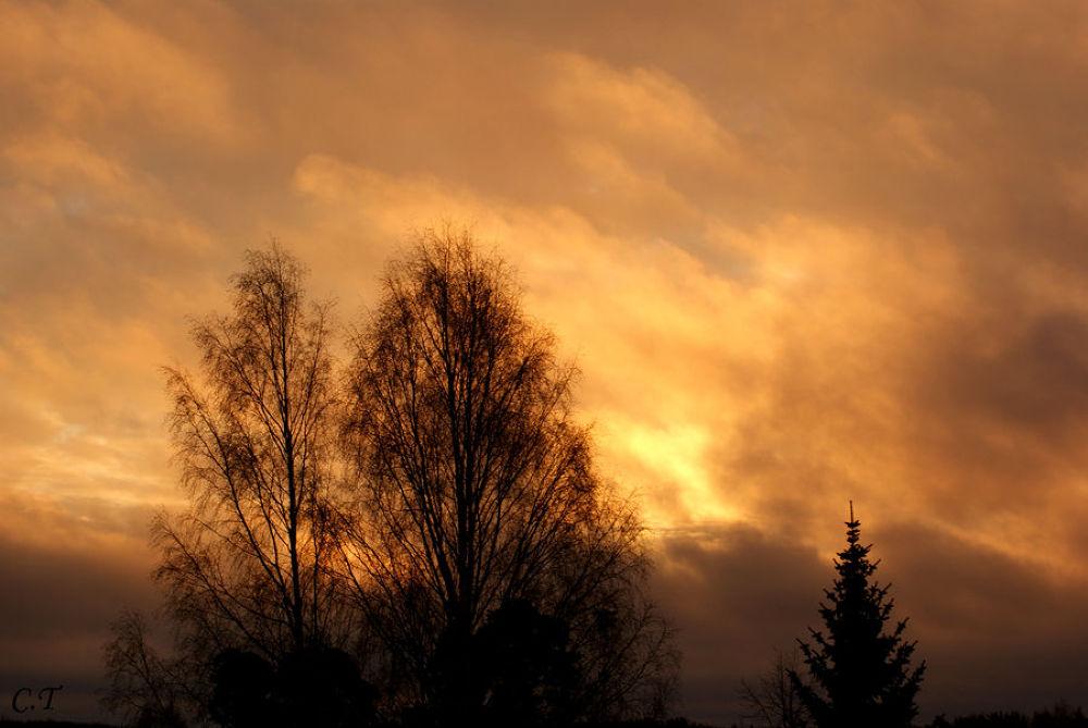 beautiful_sky_by_carolina1artemis-d4jy0o4 by CarolinaTamvakis
