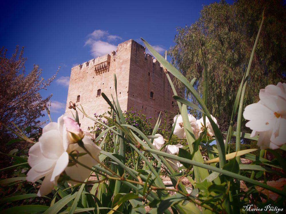 Castle Yard by mariosphilips