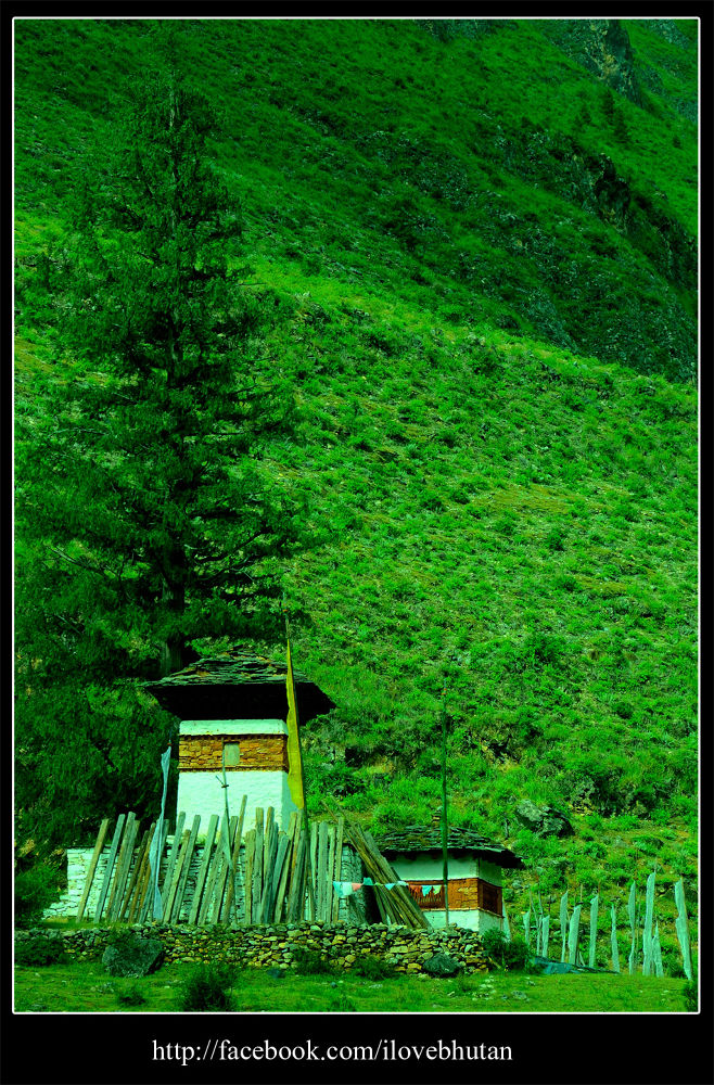 chorten by Ugyen Tshering