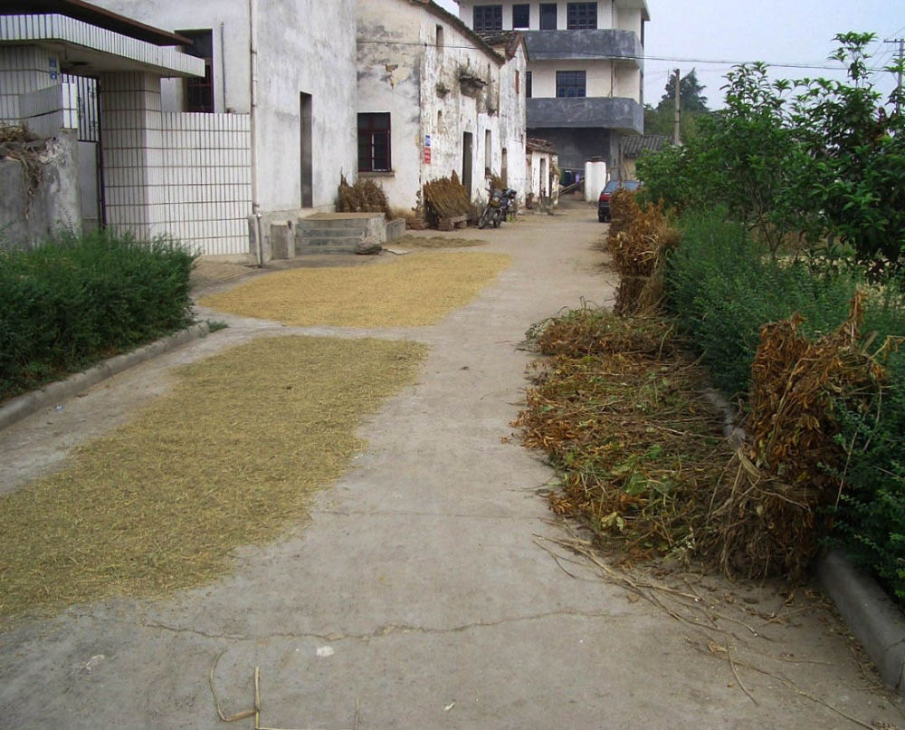 Cuzhou_Village-115 by Arie Boevé