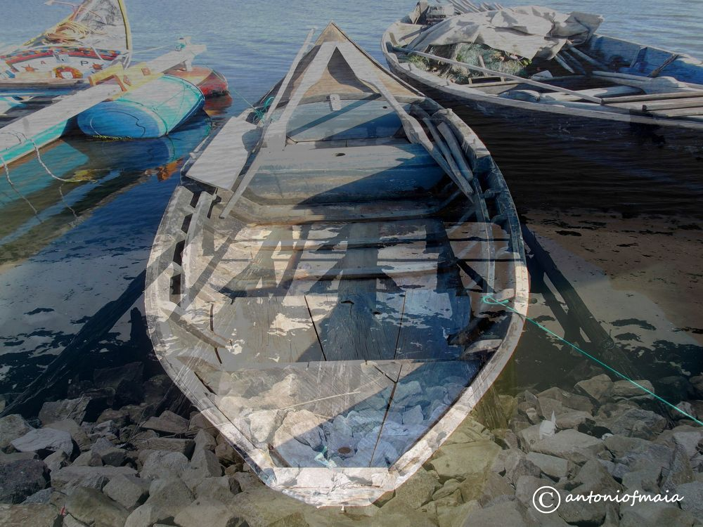 Boats ... MULTIFRAME WEB by Antonio F. Maia