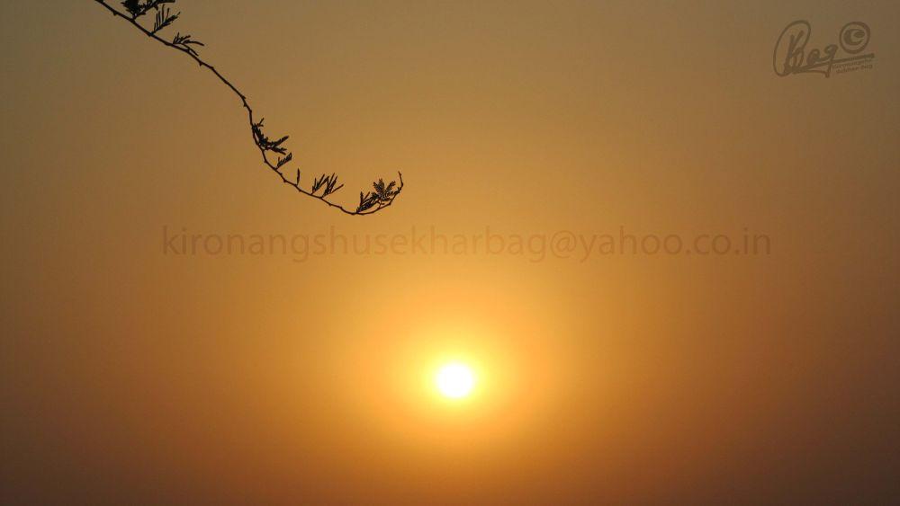 22-04-2012 (6) by Kironangshu Sekhar Bag