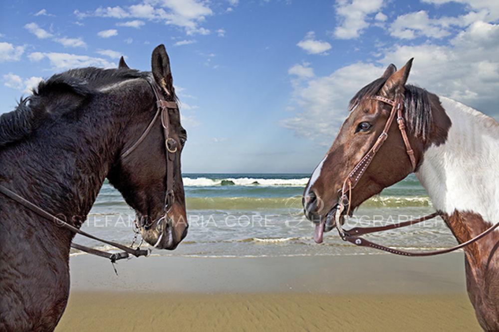Sguardi tra cavalli al mare_9013 by StefanoMaria
