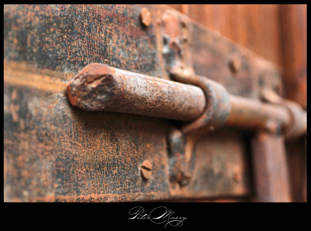 DSC_1039 by PeterMasry