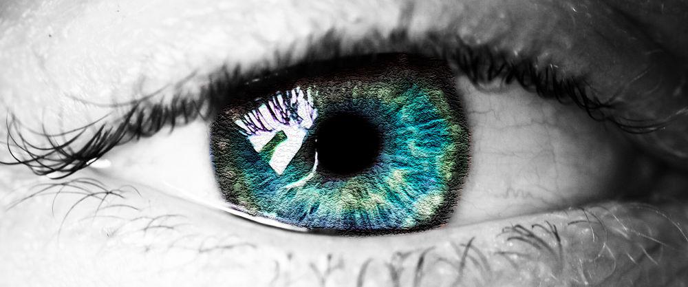 Eye by Alfie Shillingford