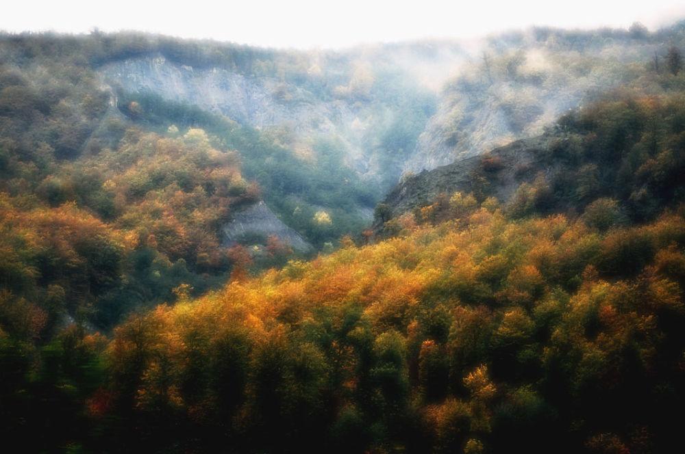 002 by Amir Dehghani