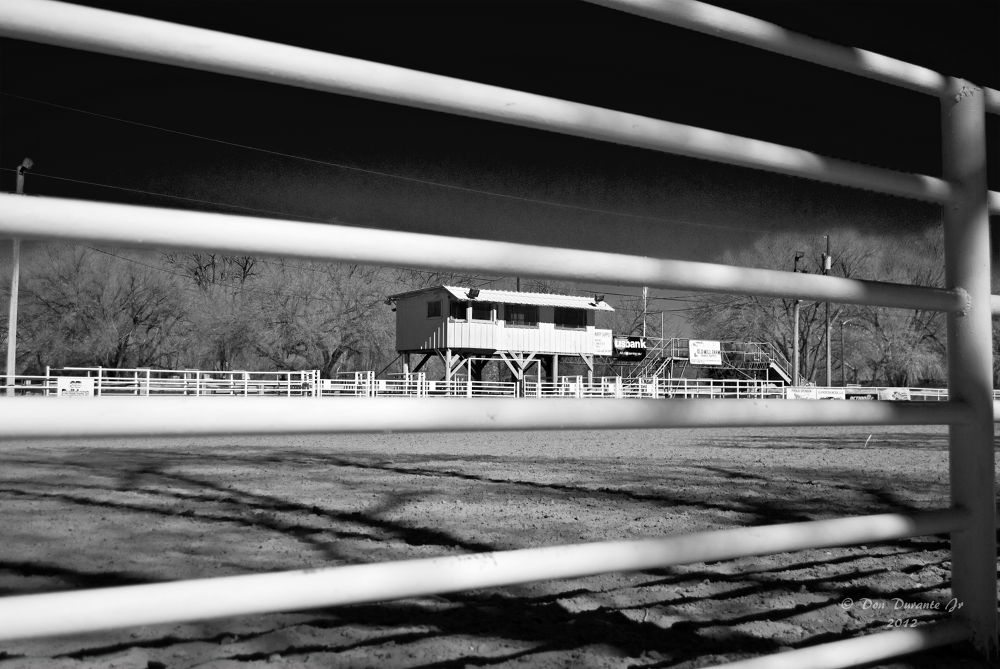 BFRA Perspective B&W by Donald Durante Jr
