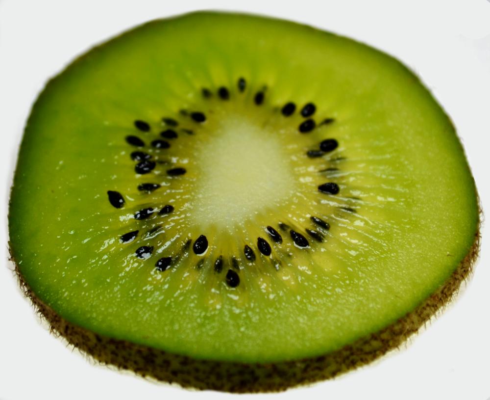 Kiwi by marcogphotography