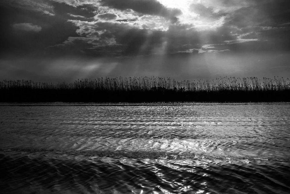 Anzali' marsh - Iran by AminDogoonchi