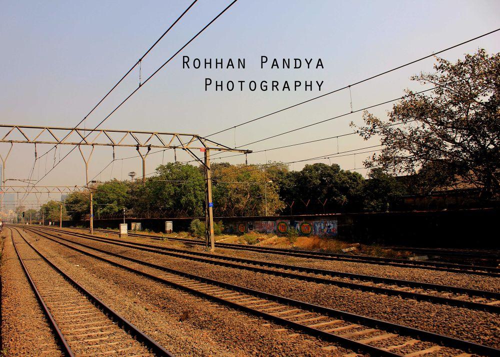 IMG_3646 by rohhanpandya