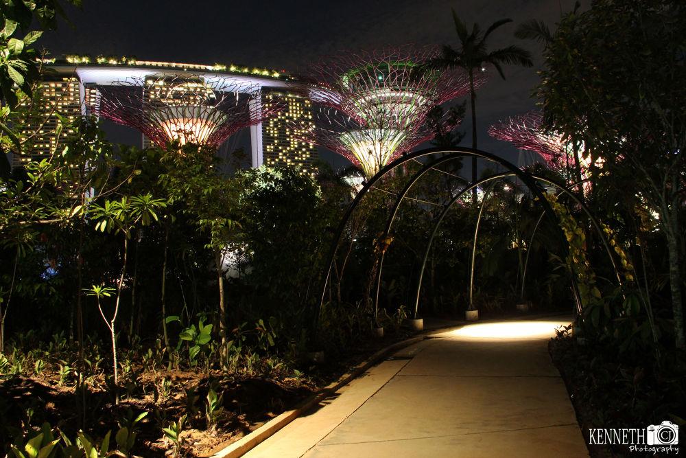 Garden By The Bay Singapore by chengjun