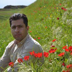 Mansour Najafi