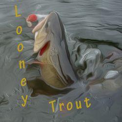 Looney Trout Studios