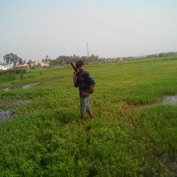 mansoonprashi