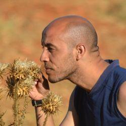 Younis Tarek