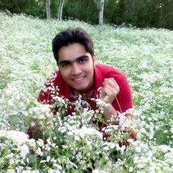 Saied Naser