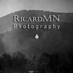 RicardMN