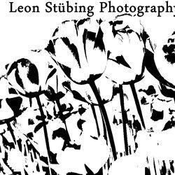 Leon Stübing